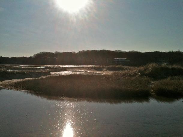 Sippewissett Marsh
