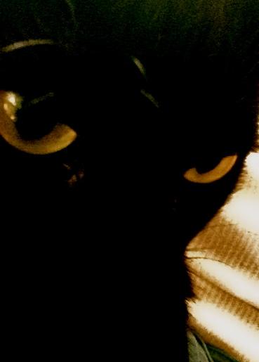 Blackie <3